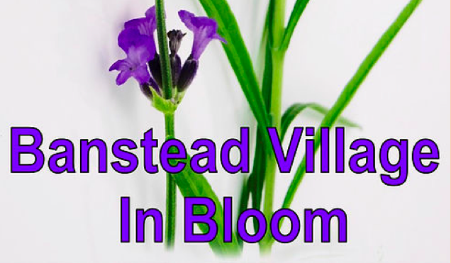 Banstead Village in Bloom